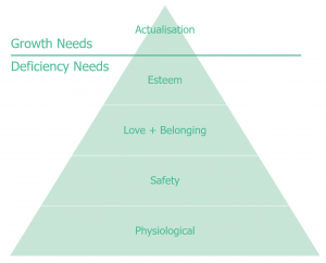 Deficiency vs Growth Needs
